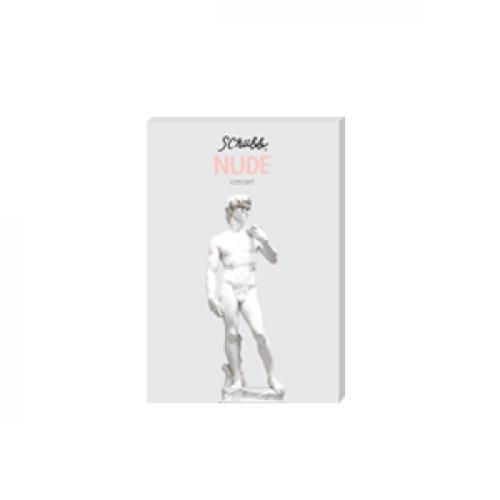 Nude Concert DVD