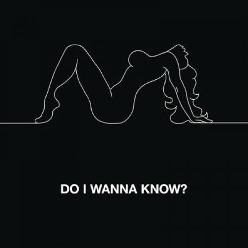 Do I Wanna Know?(Album Single)