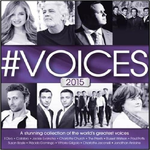 #VOICES2015