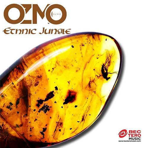 Ethnic Jungle - Single