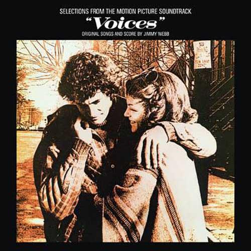Voices (Selections From the Motion Picture Soundtrack)