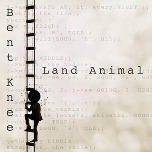 Land Animal