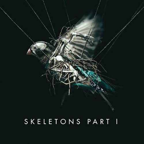 Skeletons: Part 1