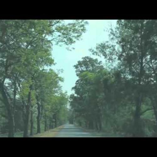 ภูมิต้านทาน[Teaser] - Better Weather